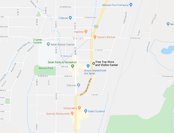 Google Maps image of Tree Top Store & Visitor Center